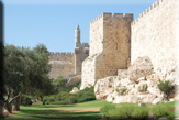 Old City Tower of David